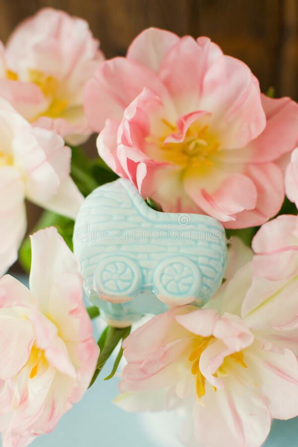 Blue little pram figurine, waiting for baby. Pregnancy theme. Bouquet of tulips with pink and white petals stock image