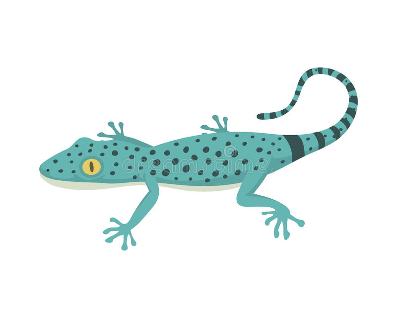 Blue lizard reptile isolated vector illustration. Wild cartoon nature dragon funny design. Reptile flat drawing body monster character vector illustration