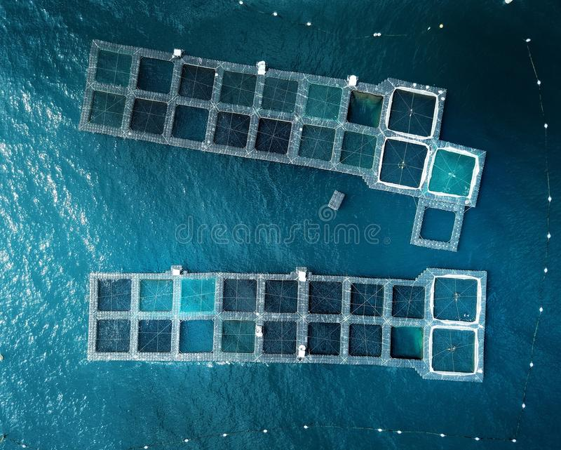 Blue Lobster Pots. Birds eye view of lobster pots in the south of France showing an abstract pattern of different shades of blue squares