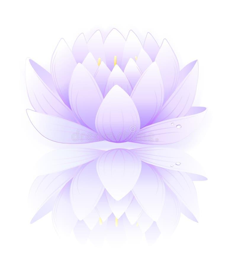 Blue lotus vector illustration