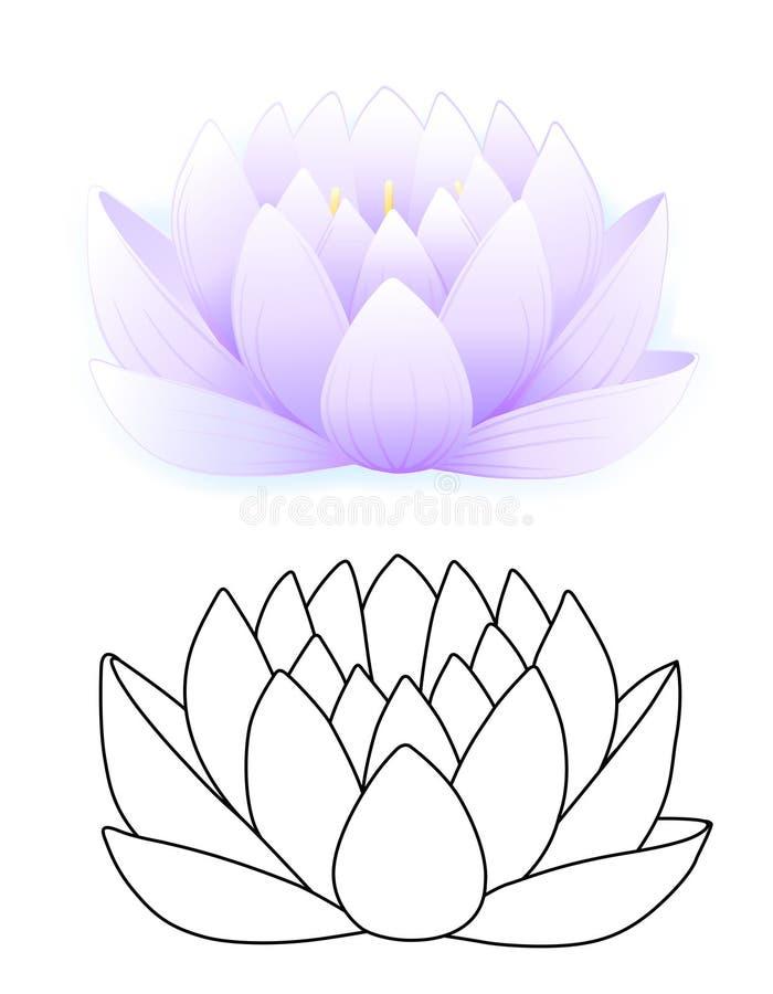 Blue lotus stock illustration