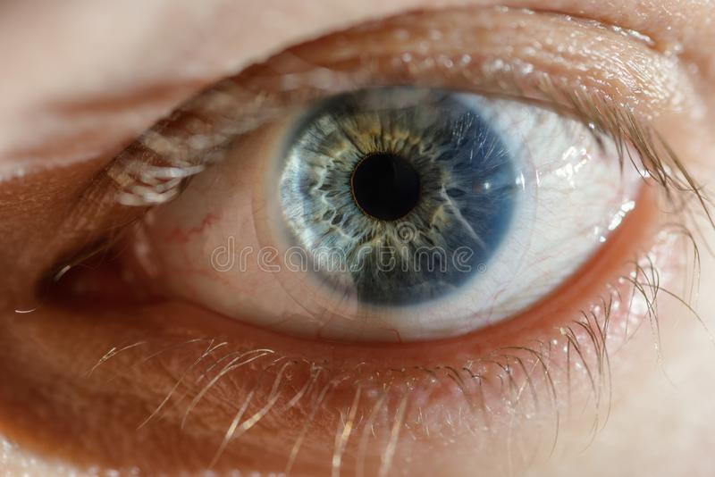 Blue man eye with contact lens. royalty free stock image