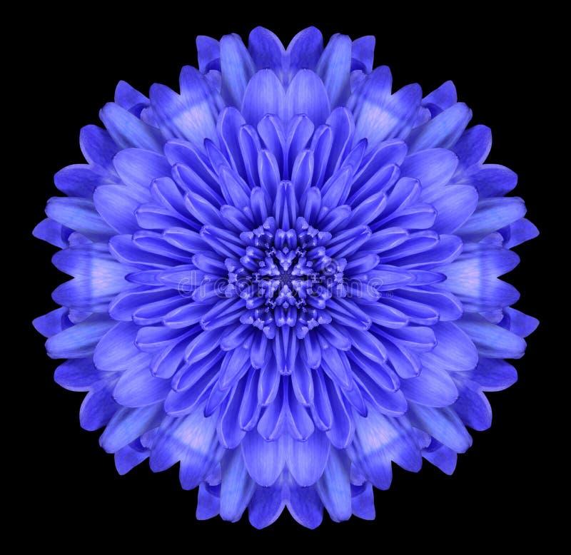 Blue Mandala Flower Kaleidoscope Isolated on Black. Blue Mandala Chrysanthemum Flower. Kaleidoscopic Design Isolated on Black Background royalty free stock image