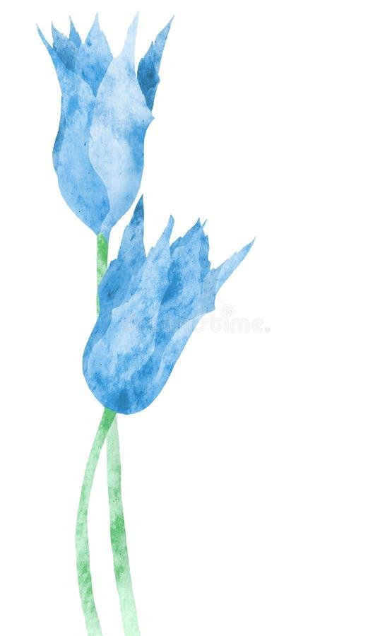 Download Blue marbled tulips stock illustration. Illustration of life - 2301693