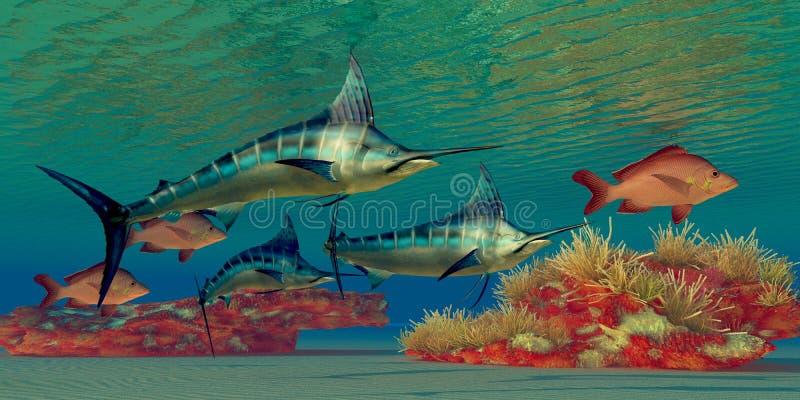 Marlin Reef royalty free illustration