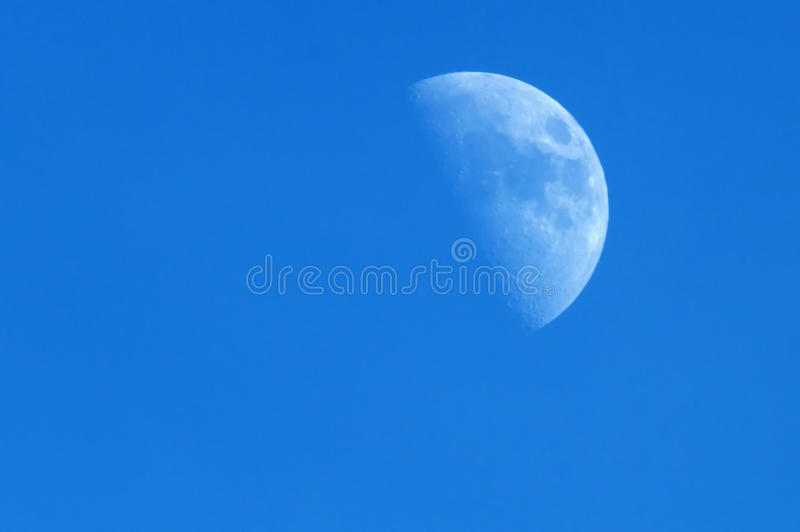 Blue Moon royalty free stock photos
