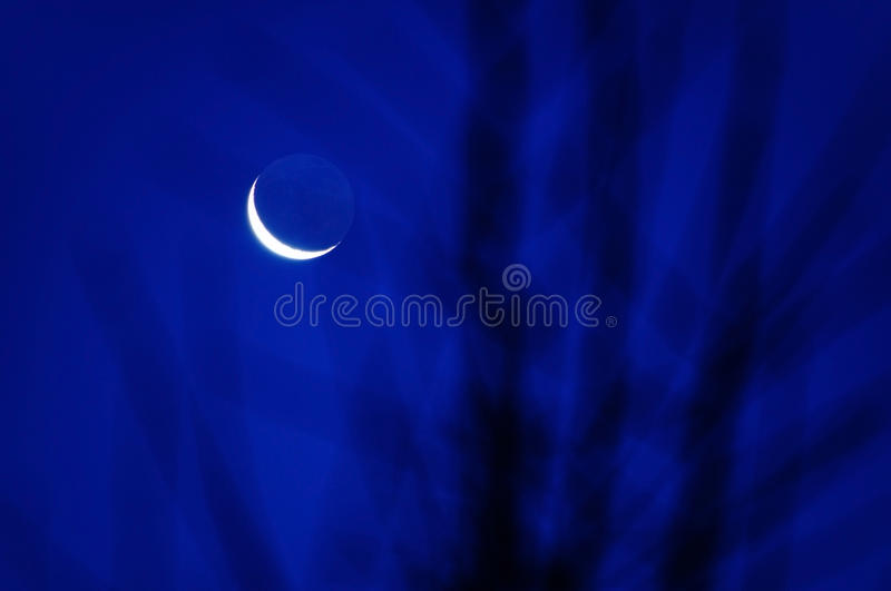 Blue moon scenery. Blue moon at night and blurred tree