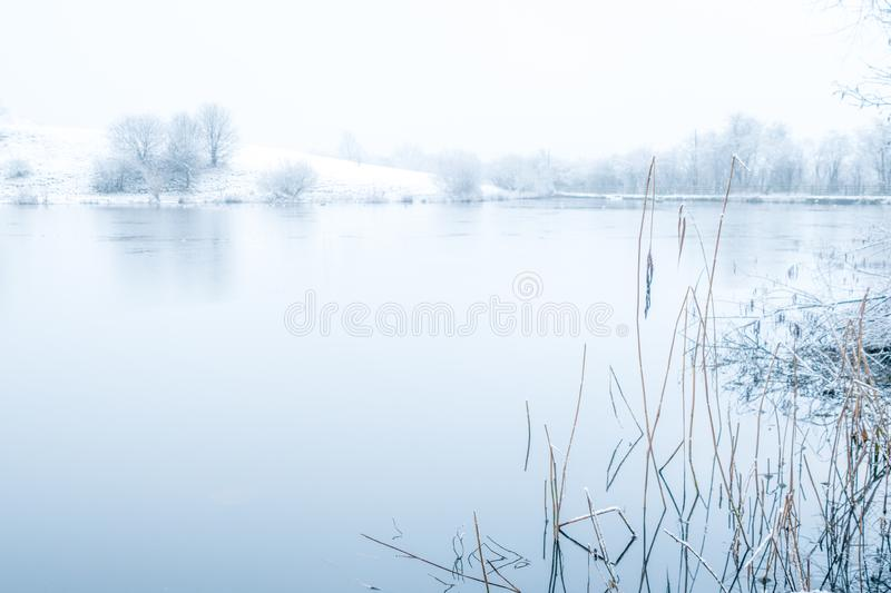 Blue morning over crime lake stock photo