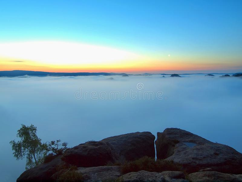 Blue morning, view over rock and fresh green trees to deep valley full of light mist. Dreamy spring landscape within daybreak. After rainy night. Blue pink sky stock photos