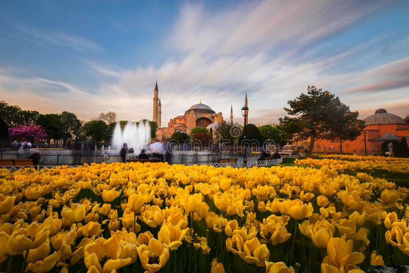 Blue Mosque and Hagia Sophia./istanbul royalty free stock photography