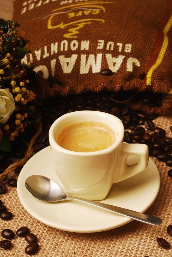 Free Blue Mountain Coffee Stock Photo - 18856760