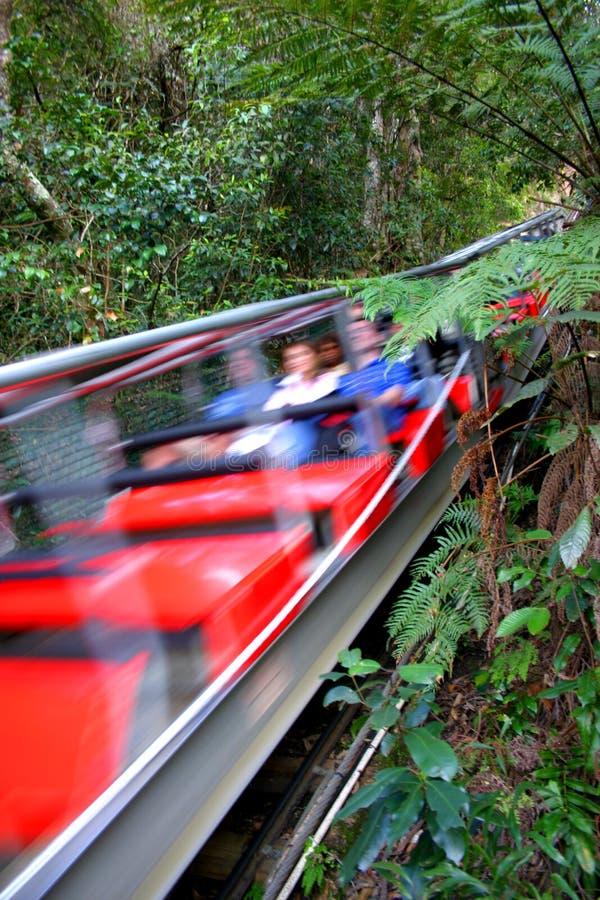 Free Blue Mountain, NSW, Australia Royalty Free Stock Images - 3239049