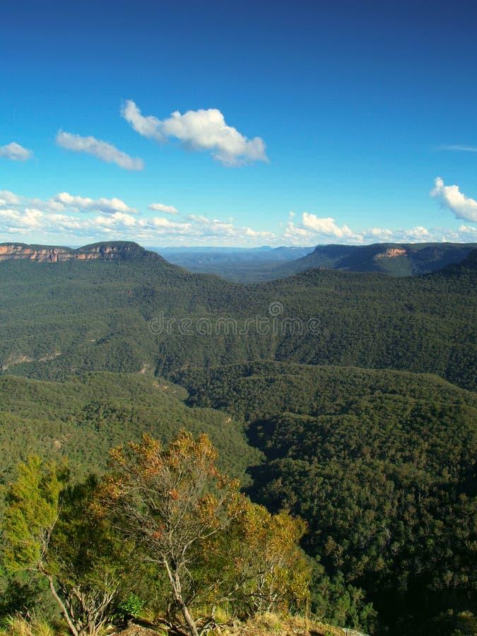 Blue mountains Australia stock photography