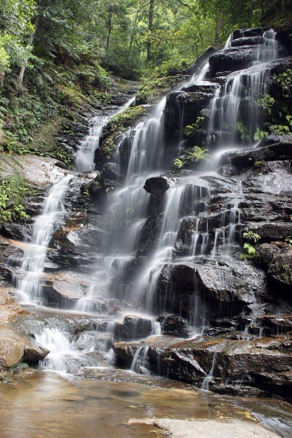 Blue Mountains National Park, Australia stock photos