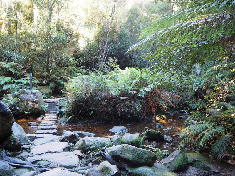 Blue Mountains National Park stock photography
