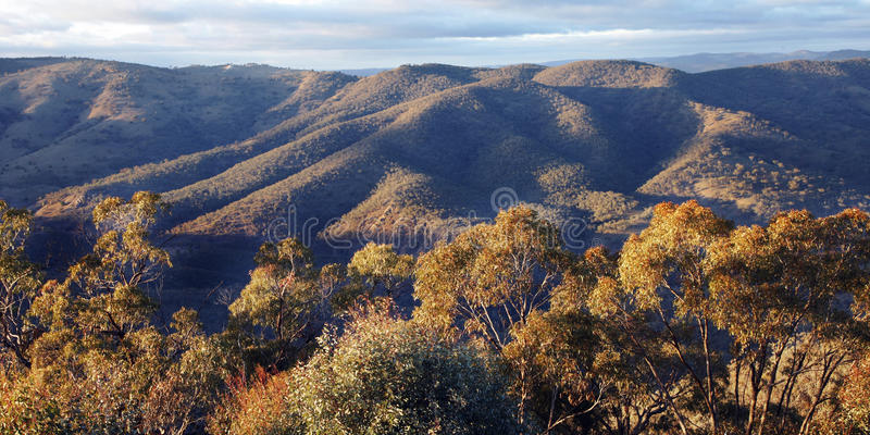 Blue Mountains Nature Landscape, Austalia royalty free stock image