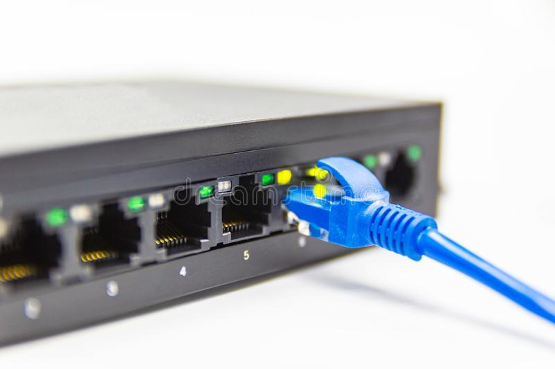 The blue network cables connect port switch on white table stock image