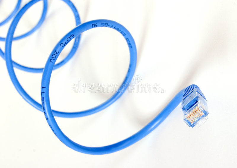 Blue Network Snake. Closeup of network cable