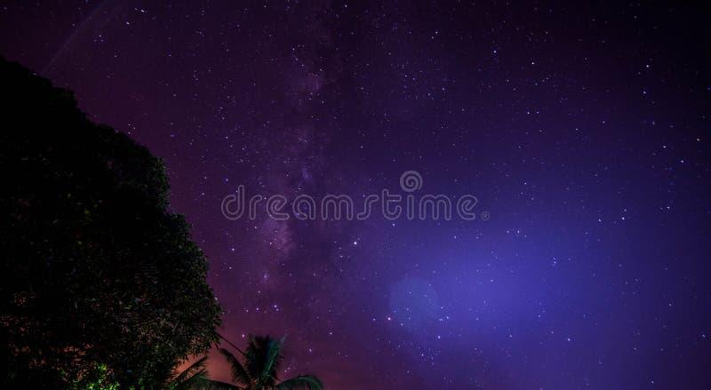 Blue night. Blue Milky-way at night royalty free stock photo