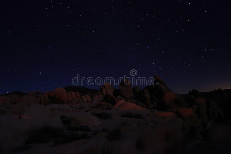 Blue Night Sky In Joshua Tree National Park Stock Image