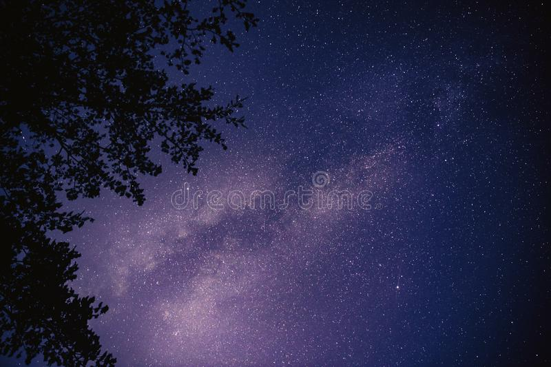 Blue night sky with star and milky way. Romantic nature background royalty free stock image