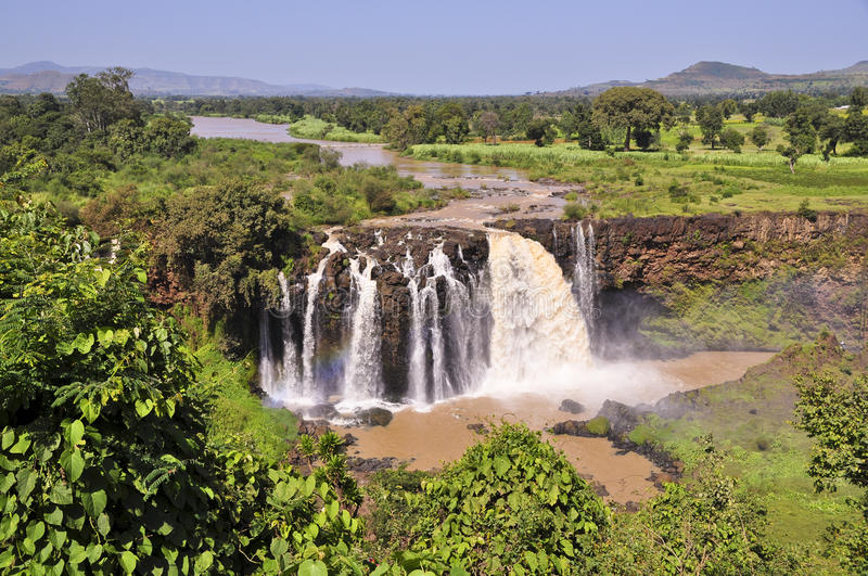 Blue Nile falls (Tis Issat). Tis Issat falls (water that thunders) at the beginning of the Blue Nile, just outside Lake Tana royalty free stock image