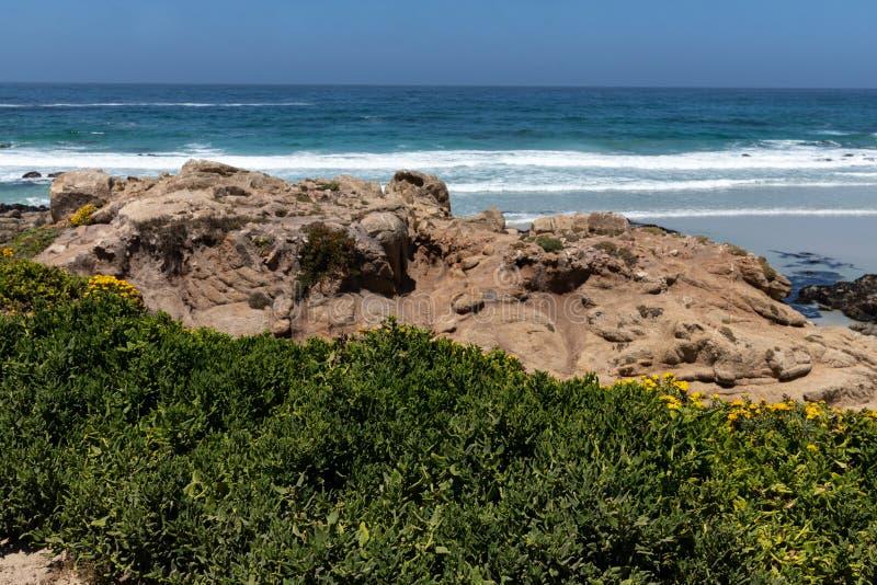 Blue ocean in California. Rocky coastal. Blue ocean in California. Rocky coastal with green grass patches stock images