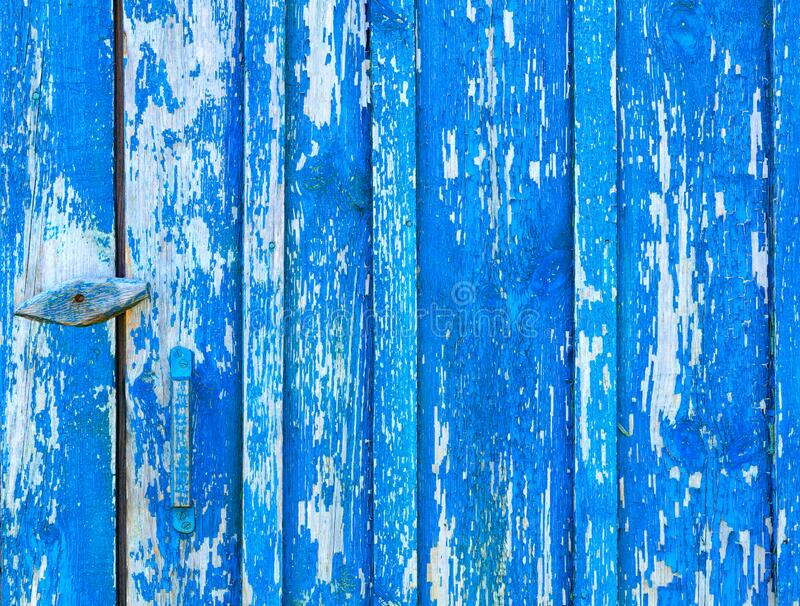 Blue old paint on an eroded shabby wooden door, texture of an old wood stock image