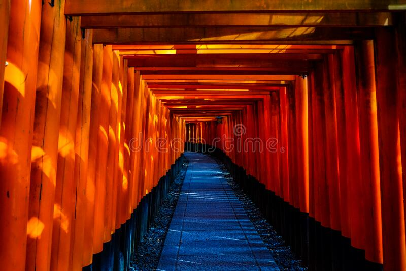 Blue And Orange Wooden Pathway Free Public Domain Cc0 Image