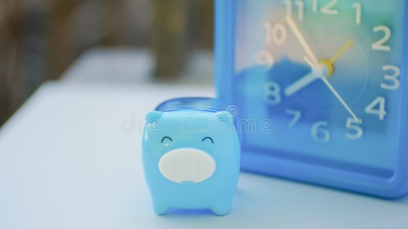 Blue pig and blue clock. In saving money concept stock images