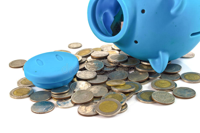 Blue piggy bank with coins. Blue piggy bank with some coins royalty free stock photography