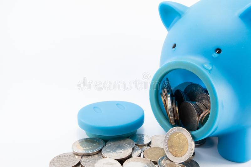 Blue piggy bank crying when opened to get coins royalty free stock photos