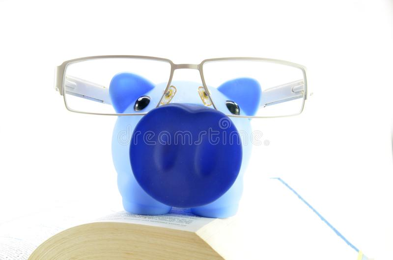 Blue piggy bank on a text books. Saving for a college education stock photos