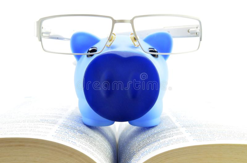 Blue piggy bank on a text books. Saving for a college education royalty free stock photos