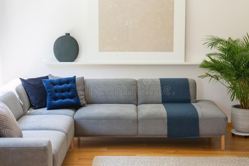 Blue pillows on grey corner couch in living room interior with p royalty free stock images