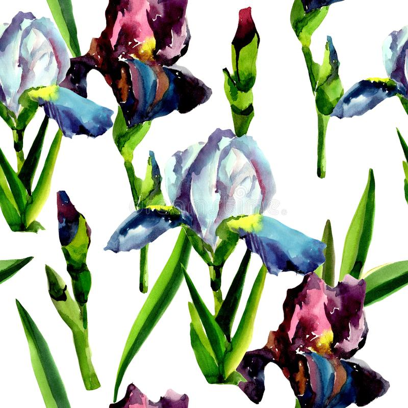 Blue and pink irises. Floral botanical flower. Seamless background pattern. Fabric wallpaper print texture. Aquarelle wildflower for background, texture vector illustration