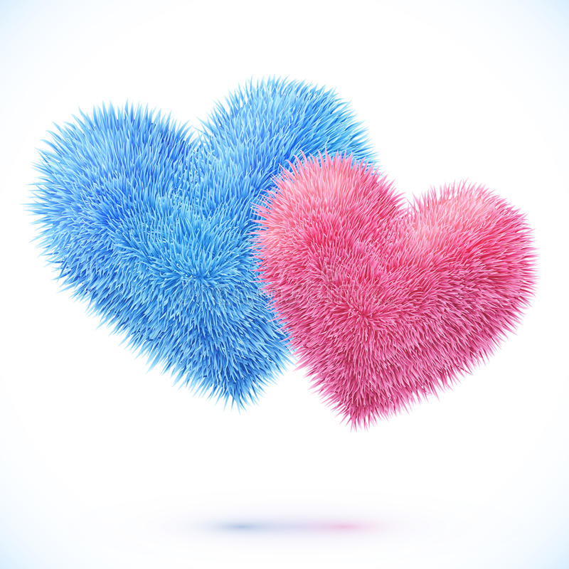 Blue and pink pair of hearts vector illustration