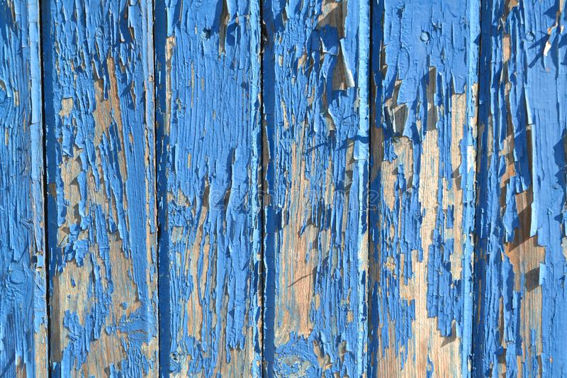 Old blue planks with peeling paint. Shabby weathered timber. Empty space stock image