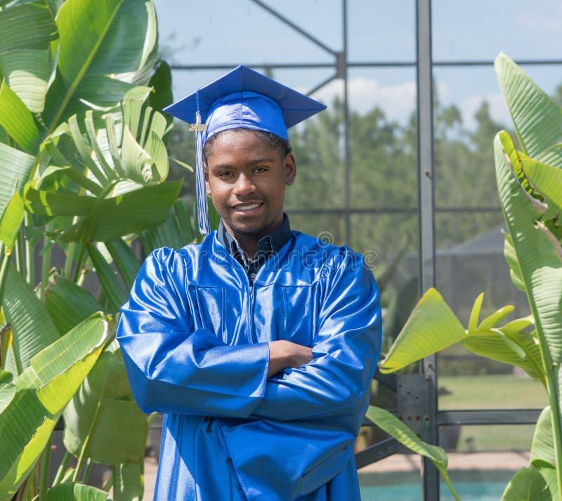 Blue, Plant, Tree, Graduation royalty free stock photo