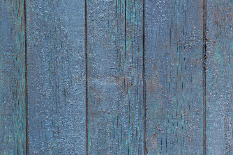 Blue plaque wall of the old barn. Textured and peeling blue pain royalty free stock images