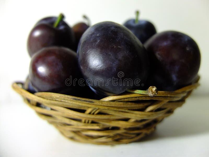 Blue plums. stock photos