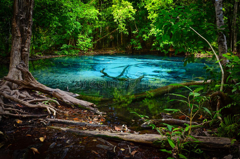 The Blue Pool Stock Image Image Of Season Lake Forest