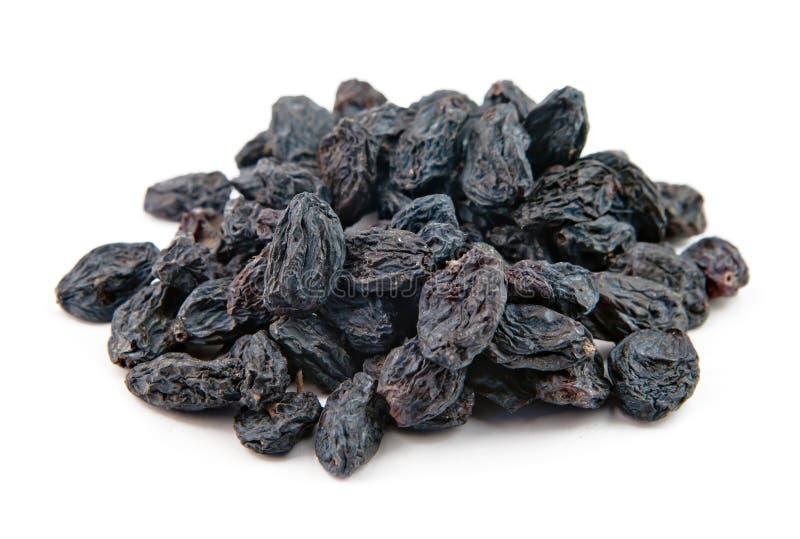 Blue raisin stock image