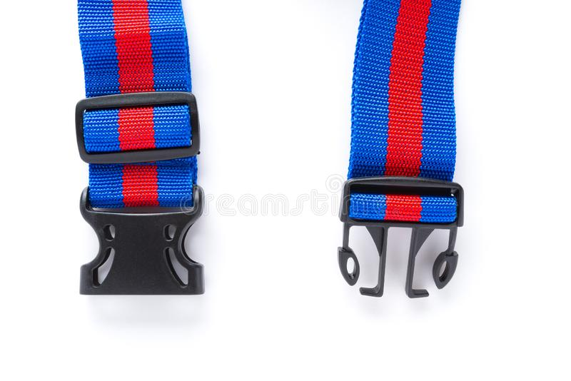 Blue & red harness with black buckles on white bckground. Blue and red harness with black buckles on white bckground stock photos