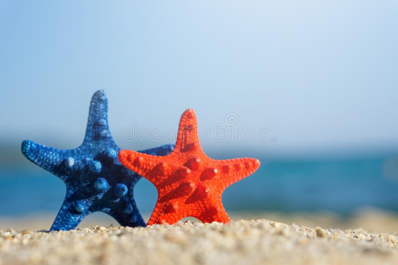 Blue and red starfishes pinned on sand at the beach. Blue sea on background stock images