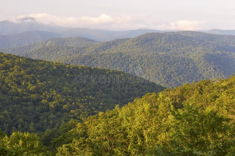Blue Ridge Mountains in Nelson County, Virginia. Summertime view of mountains from the Blue Ridge Parkway about 25 miles south of Waynesboro, Virginia royalty free stock image
