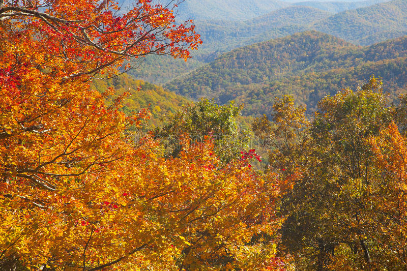 Blue Ridge Parkway Autumn Colors In North Carolina royalty free stock image