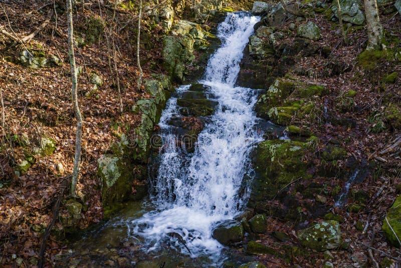 Blue Ridge wild mountain waterfall - 2 royalty free stock images