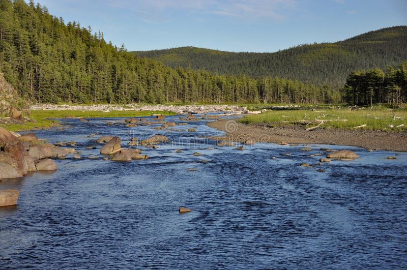 The blue rocky river flows among the low forested mountains royalty free stock images