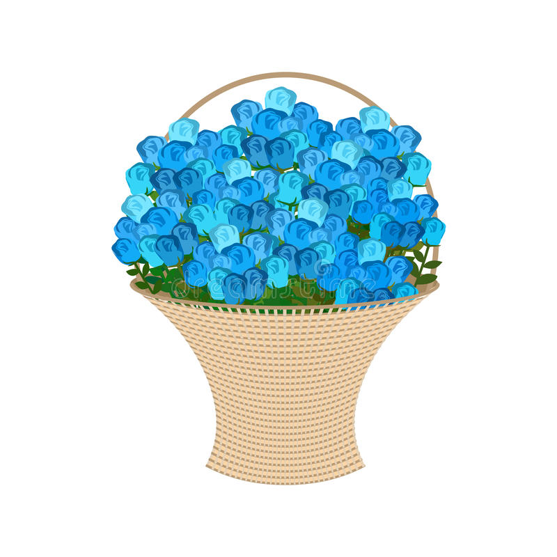 Blue roses Basket. large bouquet of flowers isolated.  royalty free illustration